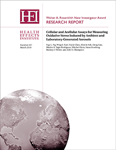 HEI Research Report 197 cover